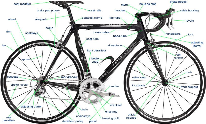 10 Speed Bike Gear Diagram : Bicycle